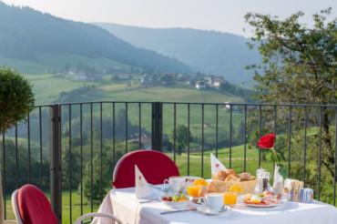 Terrazza panoramica Hotel Sonnenheim